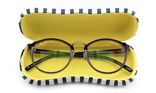 Opticians glasses case